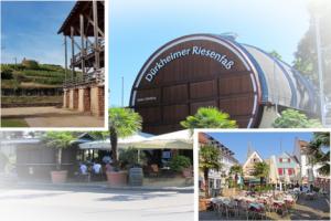 Deine Unternehmen, Dein Urlaub in Bad Dürkheim